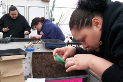 Annette Lucy & Dawn seeding