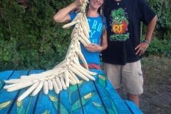 2013.9.9 Oneida Corn Braid